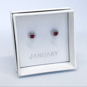 💌 Petits Bijoux Convertible Circle Studs- January